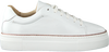 Weiße ROBERTO D'ANGELO Sneaker low FERMO  - small