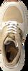 Grüne MICHAEL KORS Sneaker low MICKEY TRAINER  - small