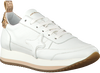 AMA BRAND DELUXE SNEAKERS 845 - small
