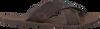 Braune REPLAY Zehentrenner CARRIK - small