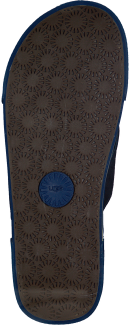 Blaue UGG Zehentrenner BRAVEN - large