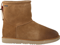 Cognacfarbene UGG Ankle Boots CLASSIC TOGGLE WATERPROOF - medium