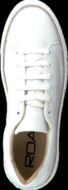 Weiße ROBERTO D'ANGELO Sneaker low FERMO  - large