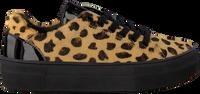 Beige BRAQEEZ Sneaker DEMI DREAM  - medium
