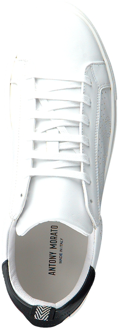 Weiße ANTONY MORATO Sneaker low MMFW01252  - large