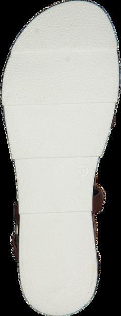 Cognacfarbene MJUS (OMODA) Sandalen 740021 - large