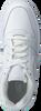 Weiße NIKE Sneaker EBERNON LOW MEN - small