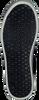 Schwarze YELLOW CAB Sneaker PISA - small