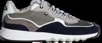 Graue FLORIS VAN BOMMEL Sneaker low 16392  - medium