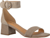 Taupe NOTRE-V Sandalen 19412  - small
