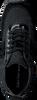 Schwarze CALVIN KLEIN Sneaker TEA - small