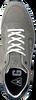 Graue GAASTRA Sneaker KAI  - small