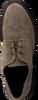 HUNDRED 100 VETERSCHOENEN M681 - small