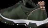 Grüne TED BAKER Sneaker 917726 QUEANEM - small